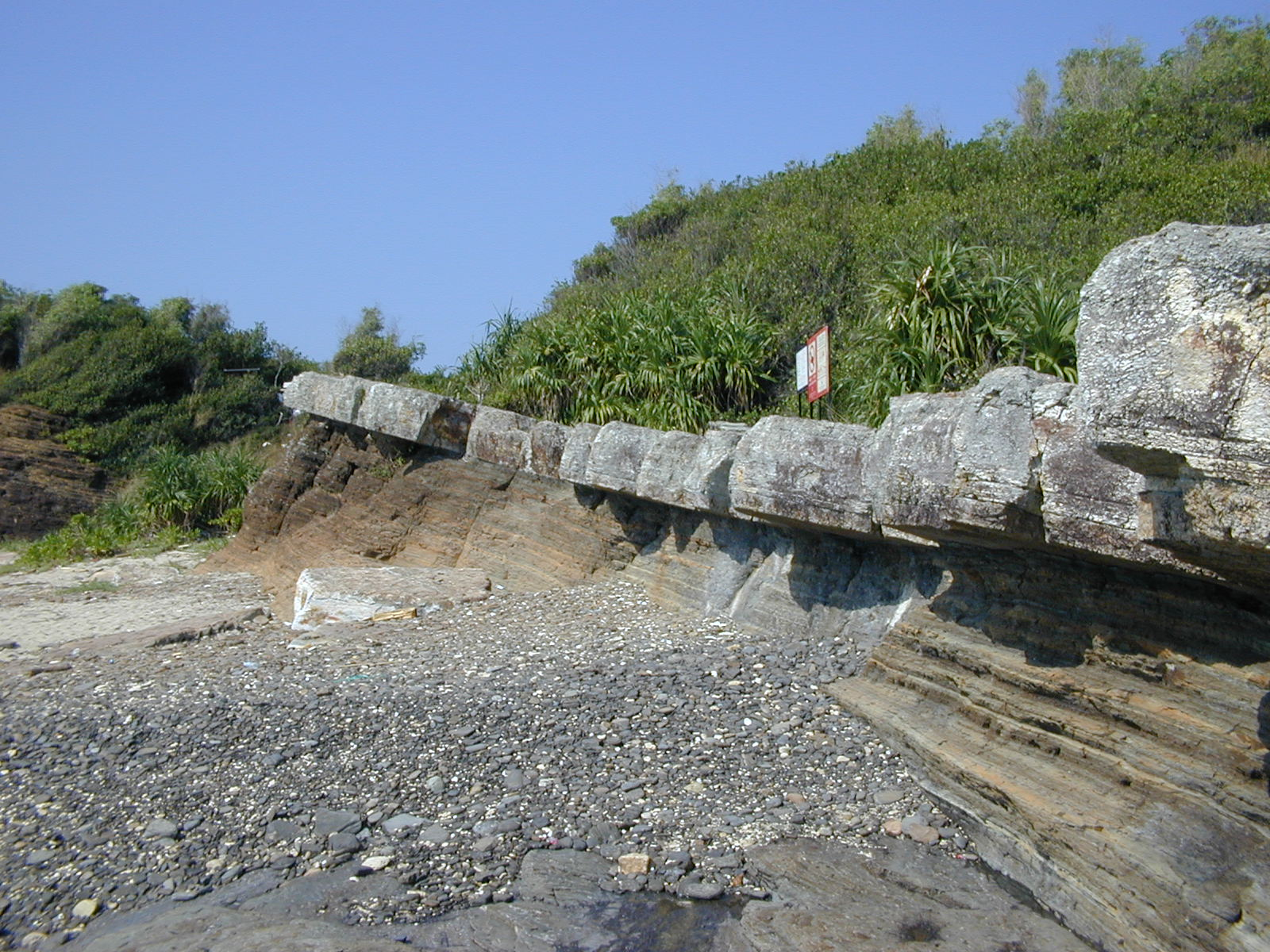 A grey layer of chert lies on top of brown layers of alternating mudstone and siltstone on Tung Ping Chau, Hong Kong SAR.. The rocks are part of the Ping Chau Formation of Paleogene age. This specific location is called Lung Lok Shui (龍落水). Photo taken on November 23, 2003.