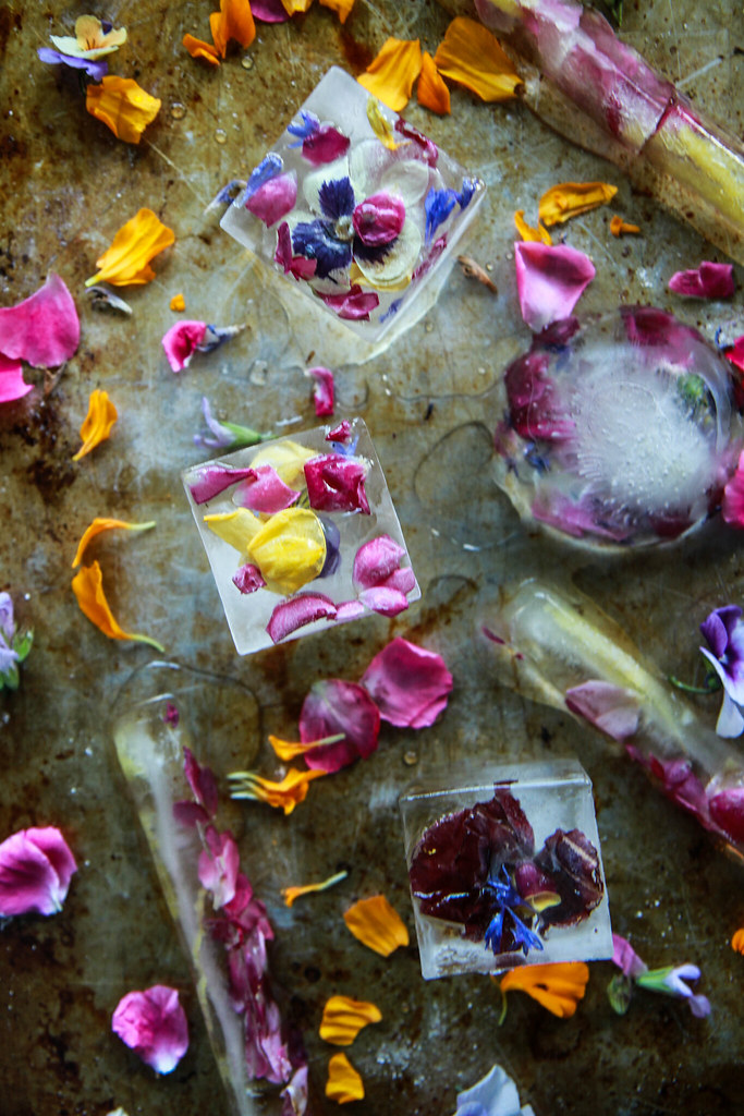 Edible Flower Ice Cubes from HeatherChristo.com
