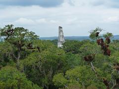 Tikal: Mayské pyramidy a džungle, kam až oko dohlédne (1. díl)