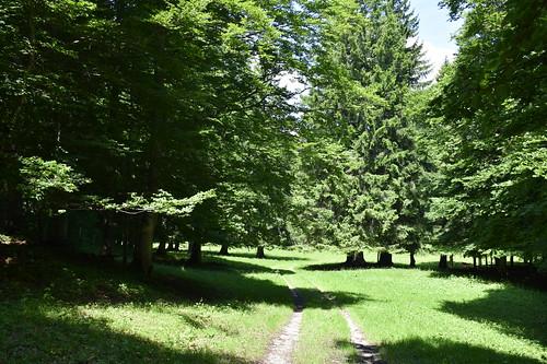 _DSC0110 Mont Aubert