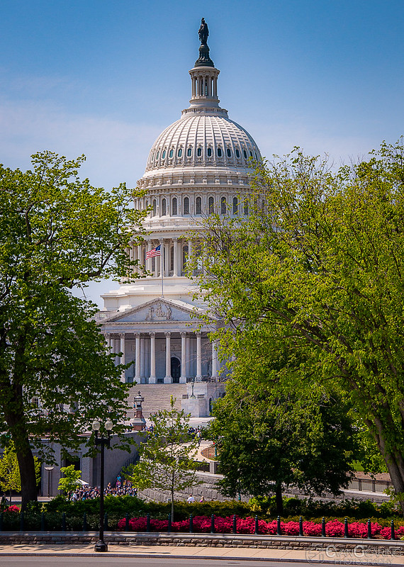 Capitol 04