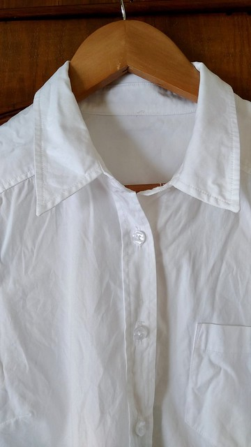 A shirt collar and placket.