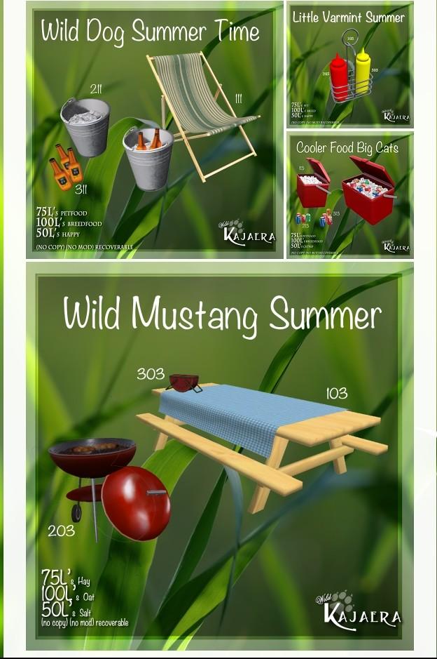 WK Wild Kajaera Summertime