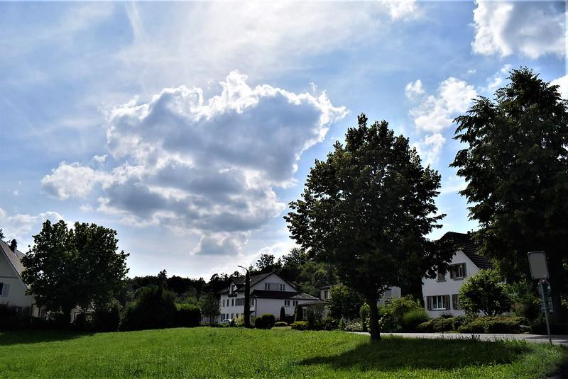 Felbrunnen 16.06 (7)