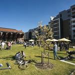 Green Square community and cultural precinct