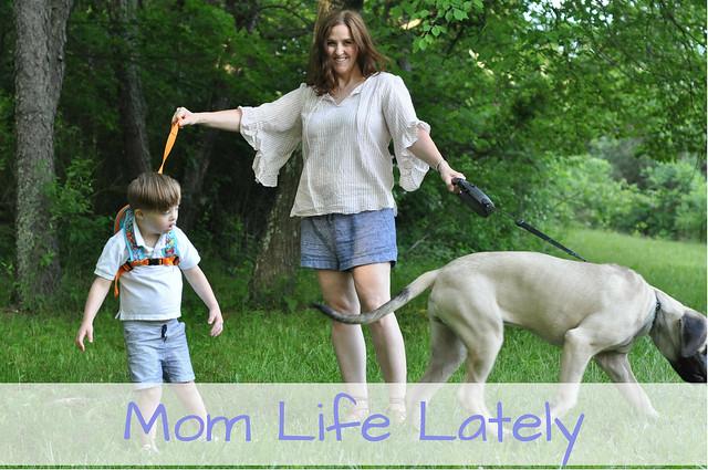 Mom Life Lately