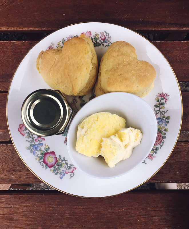 Plankbridge Shepherd's Hut, Colber Farm Happy Hare, canopy and stars, being little bristol travel lifestyle blog blogger lyzi heart shaped scone cream tea