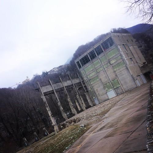 Saceba 1963-2003