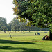 hyde park play by D3400gal