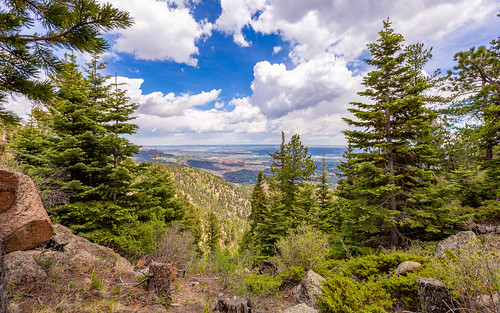 ef1635mm scenic view colorado canon6d tree conifer nature grass forest mountain pine wilderness hill plant outdoors landscape vegetation fir sky path spruce leaf noperson ecosystem outdoor flora wood sprucefirforest field hillside abies green travel naturereserve