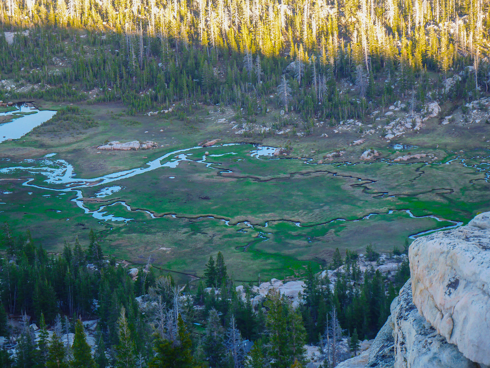 Long Meadow from Sunrise Peak