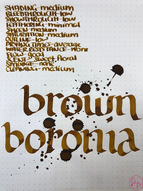 Blackstone Brown Boronia Ink Review @AppelboomLaren 9