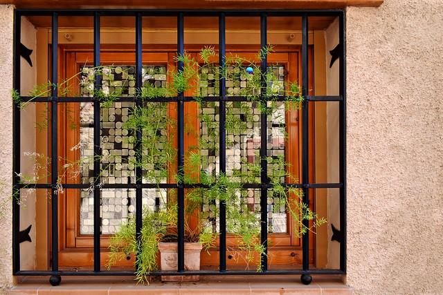 Colourful Window
