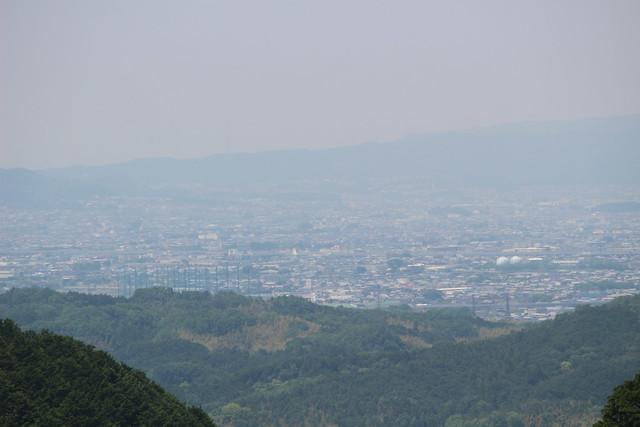 tsubosakadera027
