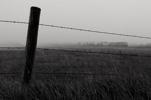 CN in the fog, Biggar SK