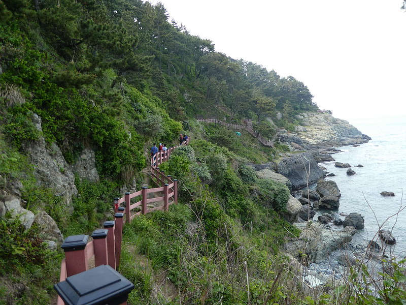Igidae Coastal Walk, Busan
