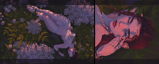 ❀ Among the Flowers ❀
