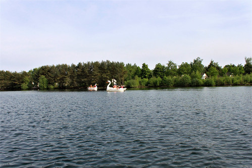pedal boats on the lake