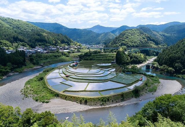 Aragijima,Wakayama(あらぎ島の棚田), RICOH PENTAX KP, HD PENTAX-DA 15mm F4 ED AL Limited