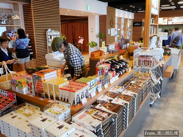 阿蘇草千里咖啡廳12