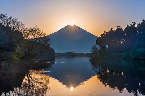 Double Diamond Fuji