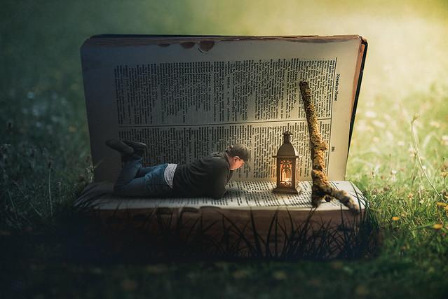 Read till dawn