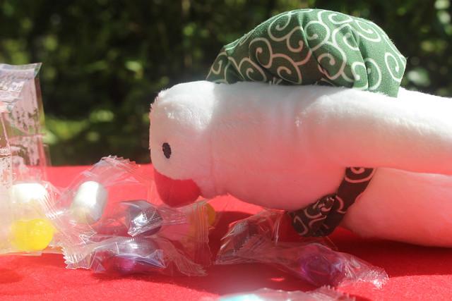 mimurotoji-sweets012