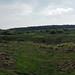 Longmoor Panorama    P6063658_9_0_1sm