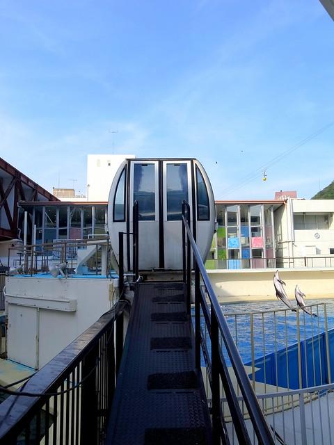 Photo:Izu-Mito Sea Paradise 伊豆・三津シーパラダイス By : : Ys [waiz] : :