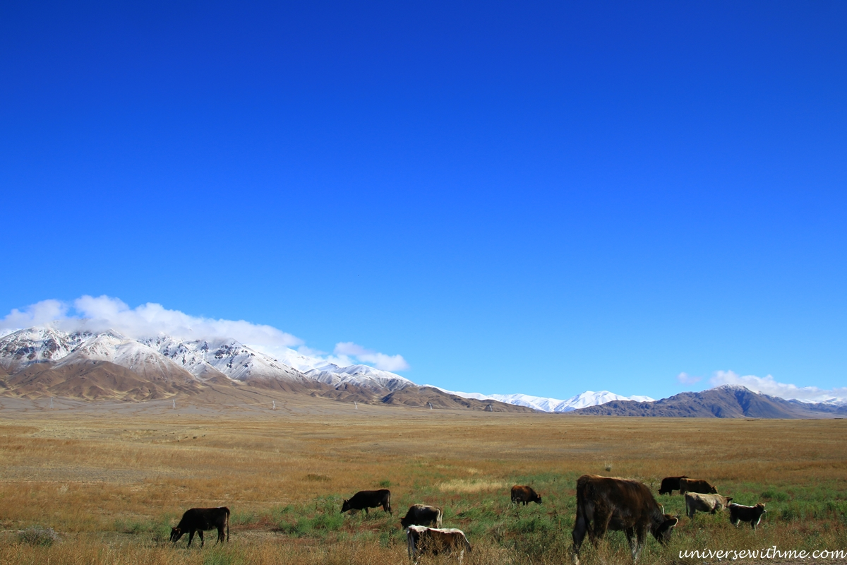 Kyrgyzstan travel_339