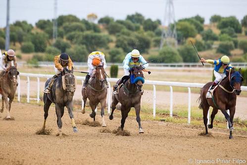 Última jornada de carreras de caballos de la temporada de primavera