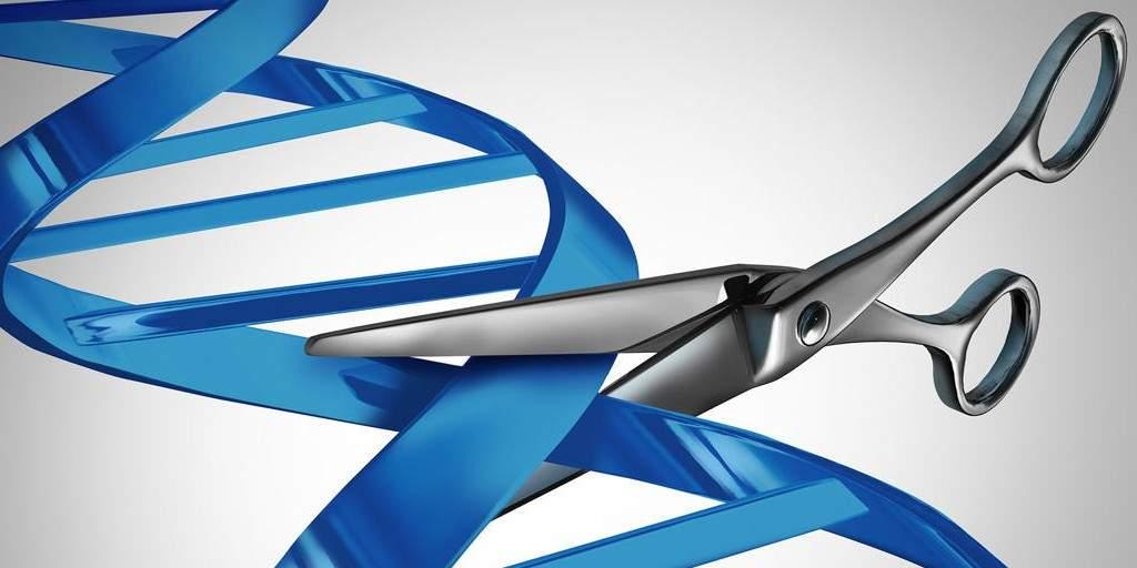 8 projets CRISPR qui pourraient changer votre vie