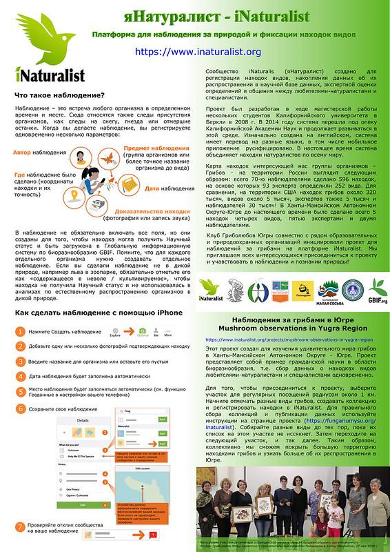 яНатуралист - постер подготовленный к Международному IT форуму в г. Ханты-Мансийске, 03.062018