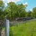 <p><a href=&quot;http://www.flickr.com/people/57951266@N03/&quot;>rctneil</a> posted a photo:</p>&#xA;&#xA;<p><a href=&quot;http://www.flickr.com/photos/57951266@N03/41051212130/&quot; title=&quot;P1040837&quot;><img src=&quot;http://farm2.staticflickr.com/1725/41051212130_dd752ebe7a_m.jpg&quot; width=&quot;240&quot; height=&quot;180&quot; alt=&quot;P1040837&quot; /></a></p>&#xA;&#xA;