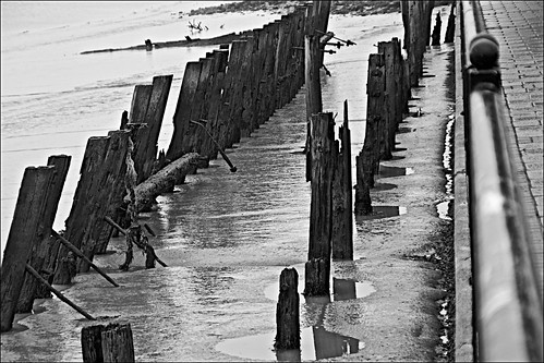 riverhumber siemens thedeep victoriadockestate mud trash rubbish lapollution wetreflections reflectiononwater reflections posts railings fences monochrome blackandwhite blackandwhitephotos blackandwhitephoto blackandwhitephotography blackwhite123 unlimitedphotos flickrunofficial flickruk flickr flickrcentral ukflickr ngc