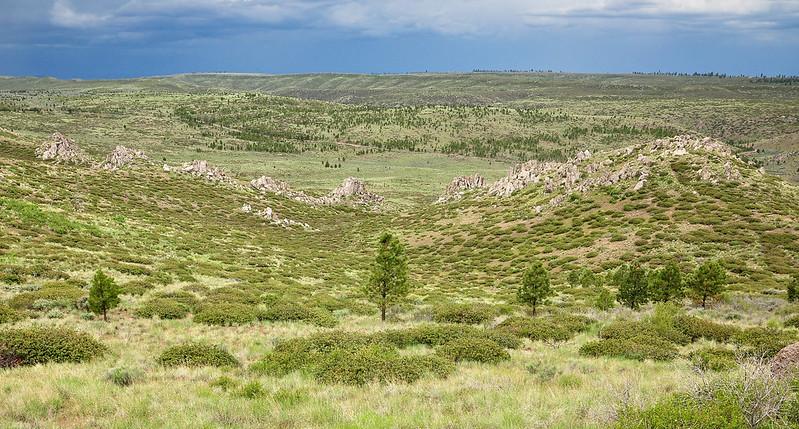 Pine Springs Overlook