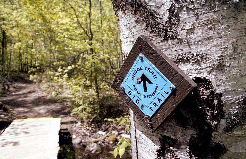 Mono Cliffs Side Trail