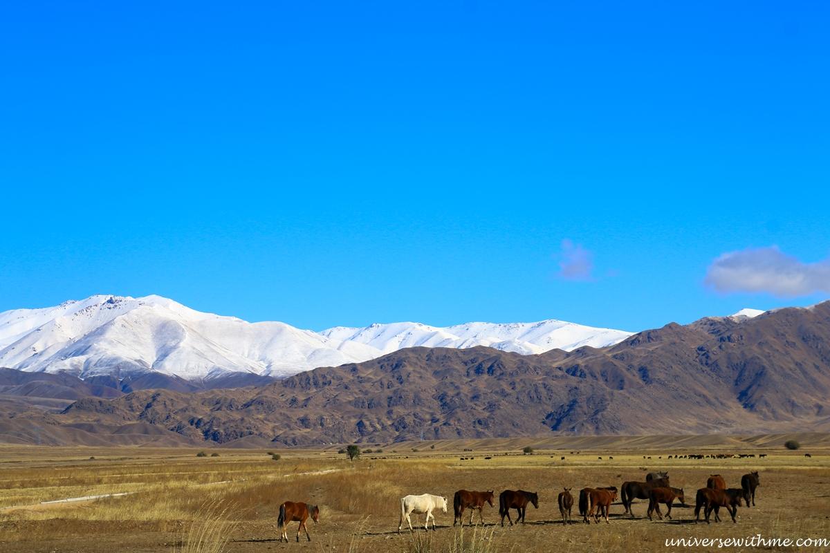 Kyrgyzstan travel_340