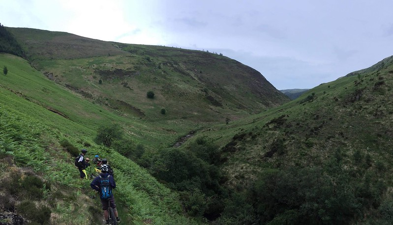 Doethie Valley singletrack