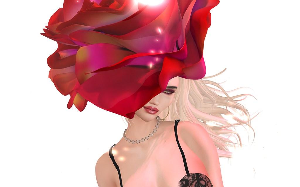 One Rose Says More Than A Dozen
