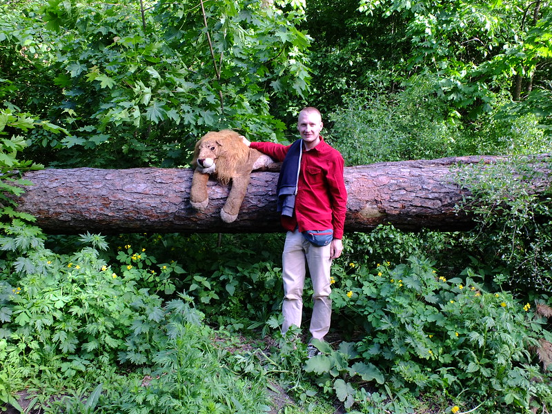 Когда встретил льва в лесу