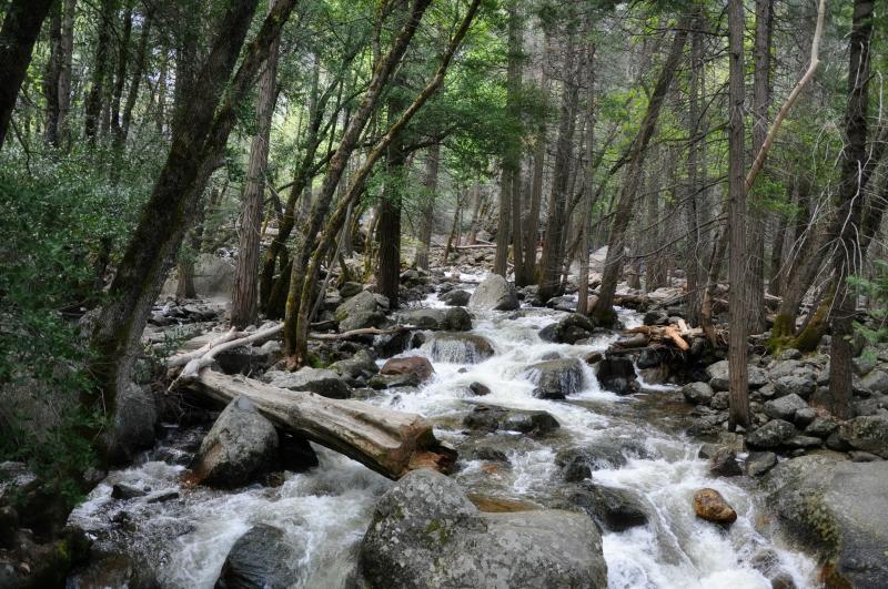 Yosemite Bridalveil Fall Trail @ Mt. Hope Chronicles