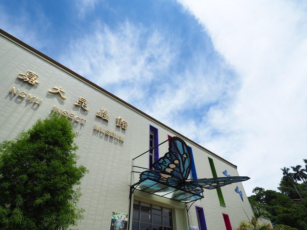 新嘉大昆蟲館 (2)