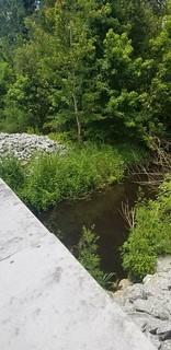 Main Canal?