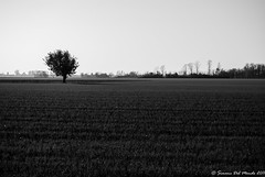 Autunno 2011_105-3