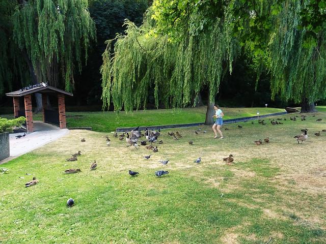 Polson Park (61)
