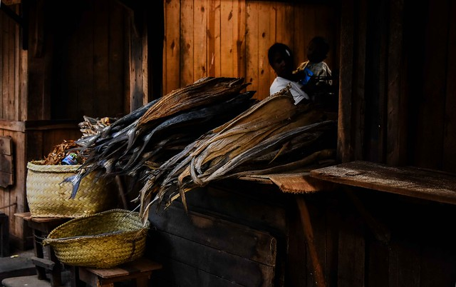 Dried Fish and Eel