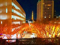 Keyakizaka Illumination Roppongi Hills