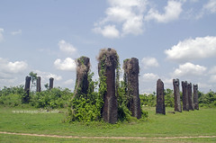 Pillars of Sisupalgarh