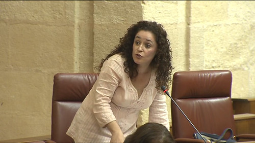 Nieto, en sesión parlamentaria.3